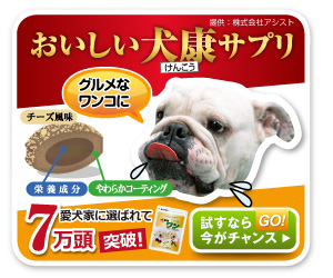 犬用健康食品 犬康食・ワン プレミアム 商品情報☆