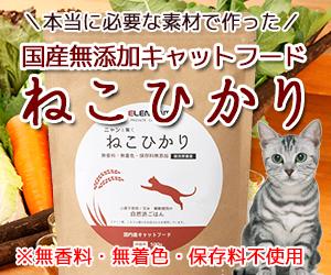 愛猫の健康管理できてますか?国産無添加キャットフード「ねこひかり」で食事の質を改善!