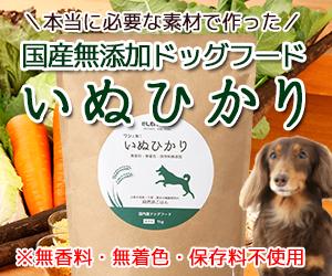 愛犬の健康第一!国産無添加ドッグフードいぬひかりを選ぶべき3つの理由