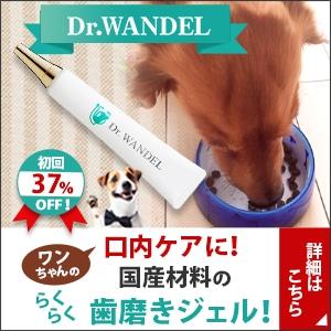愛犬の口腔ケアジェル【ドクターワンデル】の時代