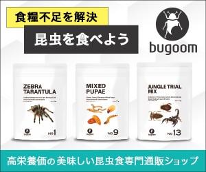 伸び盛りの人間が食べれる昆虫!美味しい昆虫食専門通販【bugoom(バグーム)】