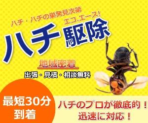 即日対応OK【エコ.エース ハチ駆除】の使い道