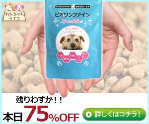 専門家も放っておかない!今こそ小型犬用スキンケアサプリ【ビオワンファイン】を理解しよう!